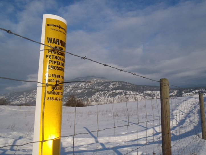 Intervenor status on pipeline expansion should be sought by City, says staffer.