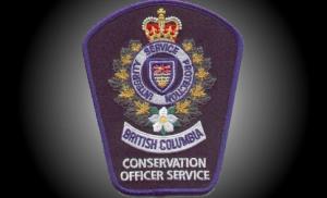 B.C. Conservation Officer Service