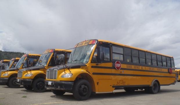 schools-buses