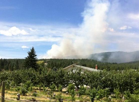 Smoke rises from West Kelowna fire. (Twitter)