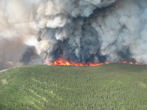Giant McAllister Lake wildfire burns out of control. (Wildlife Management Branch photo)