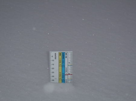 16-inch ruler takes the measure of snowfall this morning.
