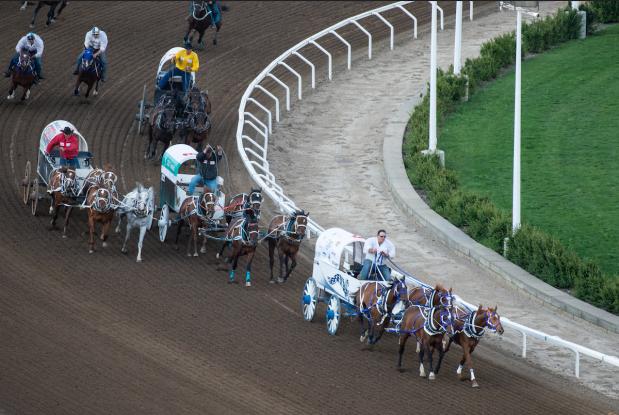 Rothenburger Chuckwagon Races Should Be Abolished